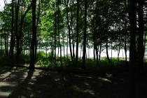 Etape2-Parc-maritime-st-laurent (22)