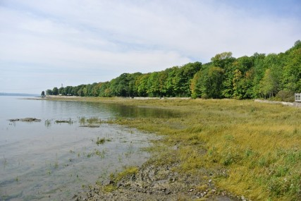 Etape2-Parc-maritime-st-laurent (6)