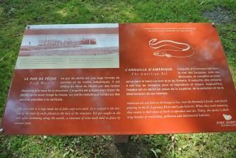 Etape2-Parc-maritime-st-laurent (9)