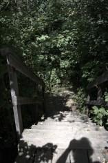 Le chemin du flâneur