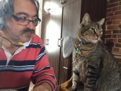 chats-du-542 (22)
