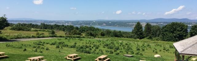 Une très belle vue sur le pont de l'Île