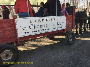 chemin du roi 14 avril 2017 (27) - Copie